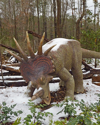 Styrracosaurus readies for the Albertosaurus. Are these dinosaurs cold-blooded?