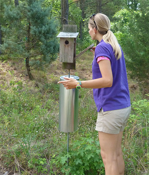 Amanda (Guest Relations) opens the nest box at the Butterfly House (5/19/15).